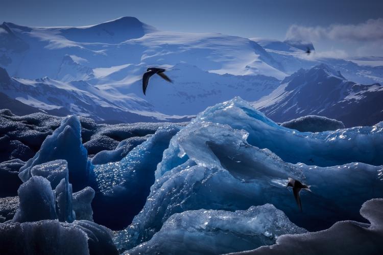 travel winter iceland